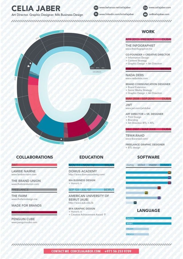 Infographic resume for programmer
