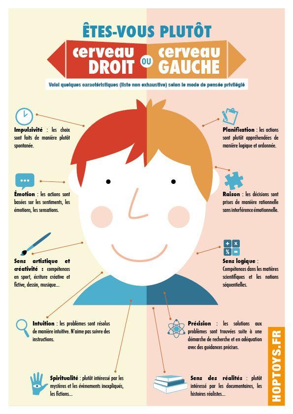 Infographic description