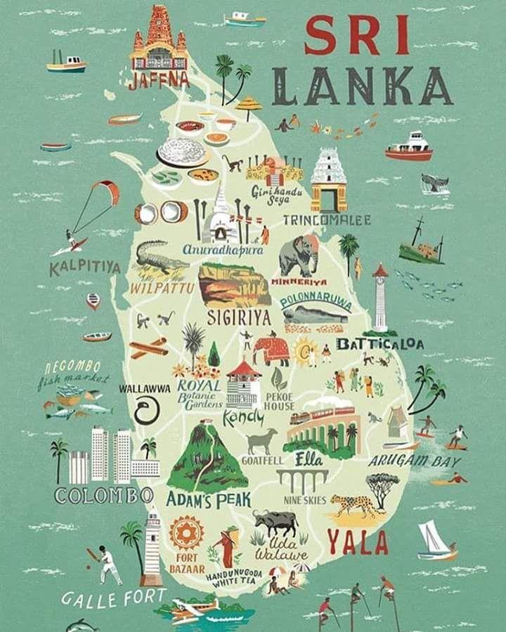 travel infographic - sri lanka for food lovers
