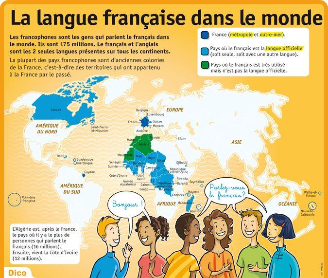 Complètement et trop extrême Educational infographic : CULTURE - Poster sur la langue française &AG_09