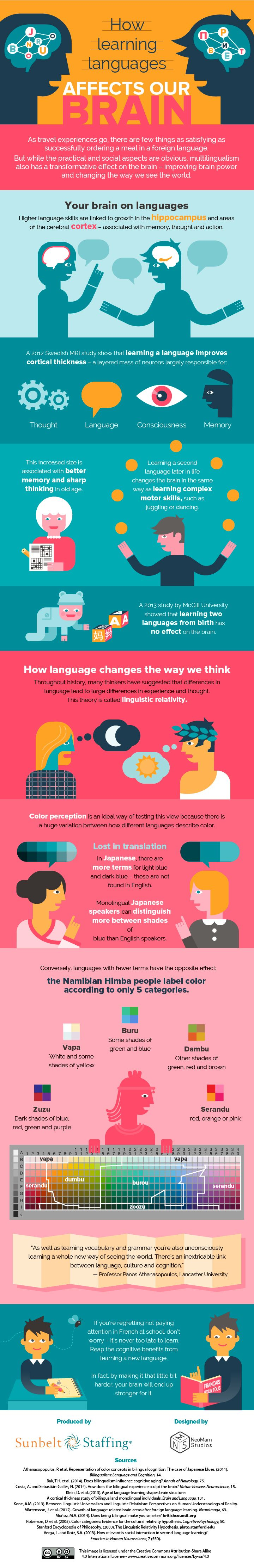 the impact of language on our way of learning Language shapes the way we think  here is your brain on language speech in the brain while our brains make sense of words instantaneously, the process of transforming sounds into meaning and .