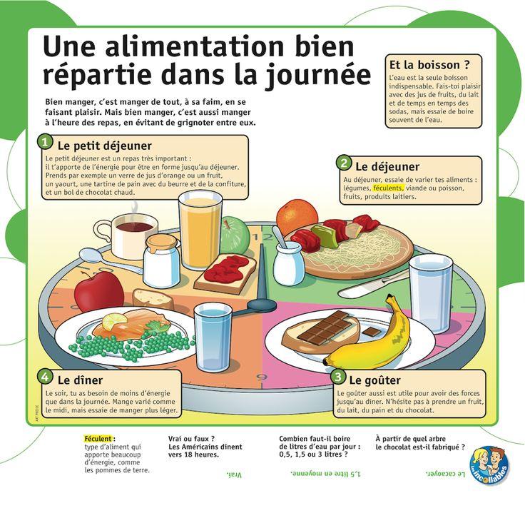 Educational Infographic Une Alimentation Bien R 233 Partie