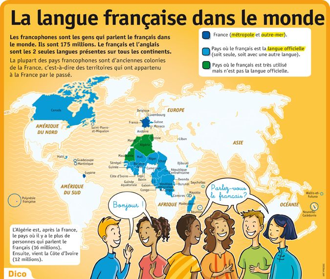 educational infographic   culture - poster sur la langue fran u00e7aise dans le monde
