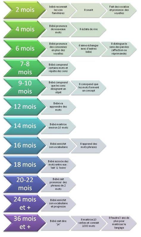 educational infographic evolution du langage chez le