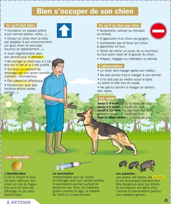 Educational infographic fiche expos s bien s 39 occuper - Jeux de chiens a s occuper ...