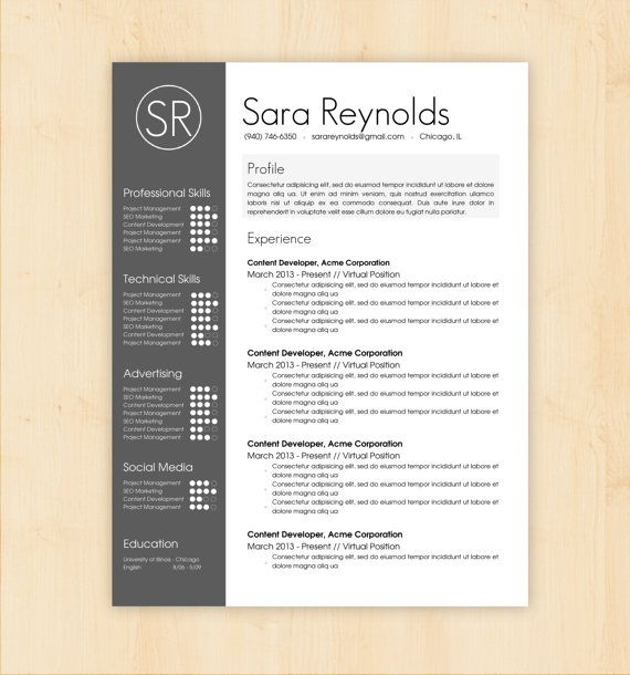 Business Infographic Resume Template Cv Template The Sara