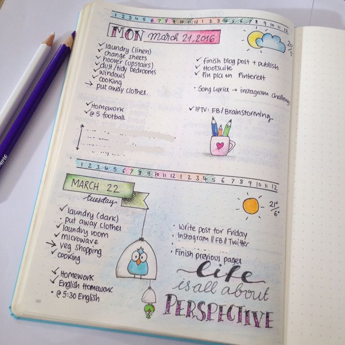 Management : Daily Spreads In Bullet Journal