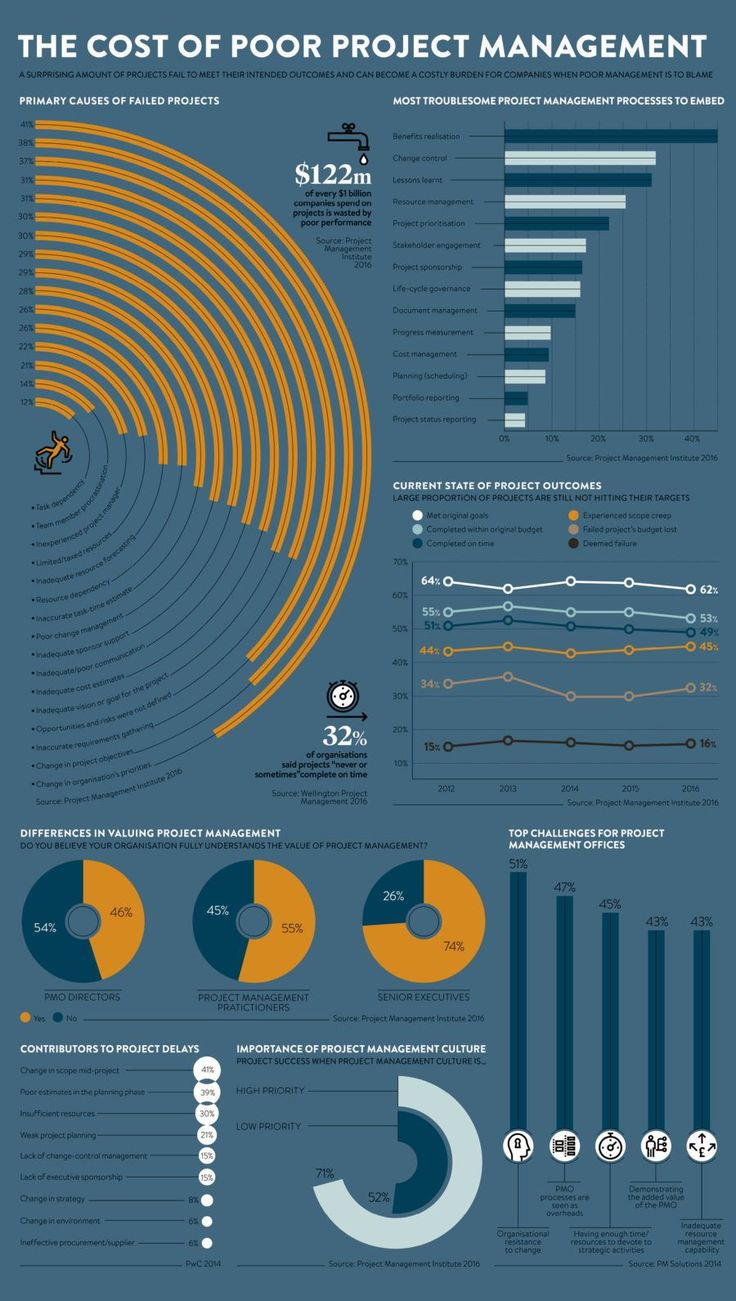 management   infographic charting the primary causes of