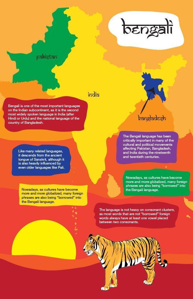 educational infographic educational infographic educational