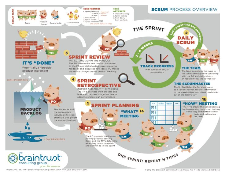 business infographic   la m u00e9thode agile - scrum