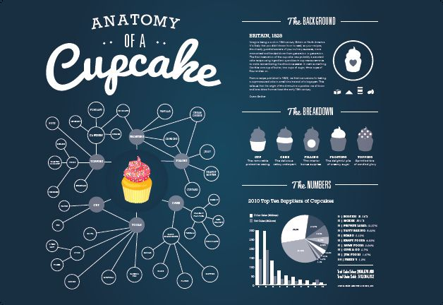 food infographic - cupcake infographic
