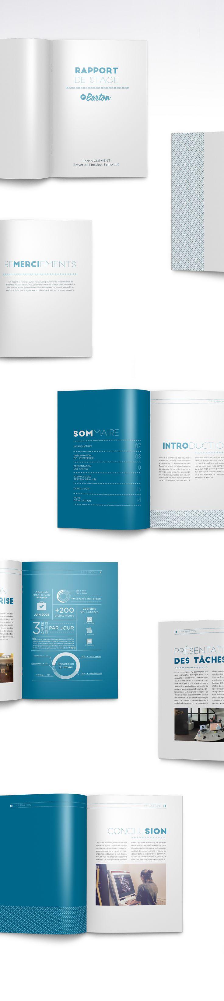 Business Infographic Création De Trois Rapport De Stage