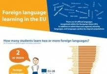 Educational infographic : Foreign language learning statistics