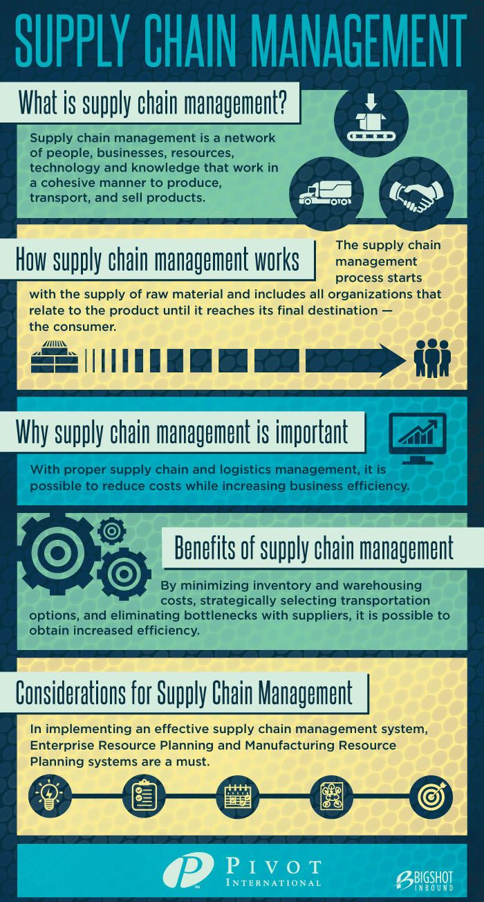 Management : Supply chain management infographic liked by
