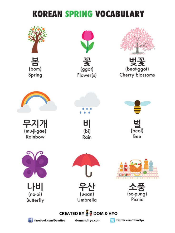 Educational infographic : Korean Language Infographics | Learn Basic Korean Vocabulary & Phrases with Dom ... - InfographicNow.com | Your Number One Source For daily infographics & visual creativity