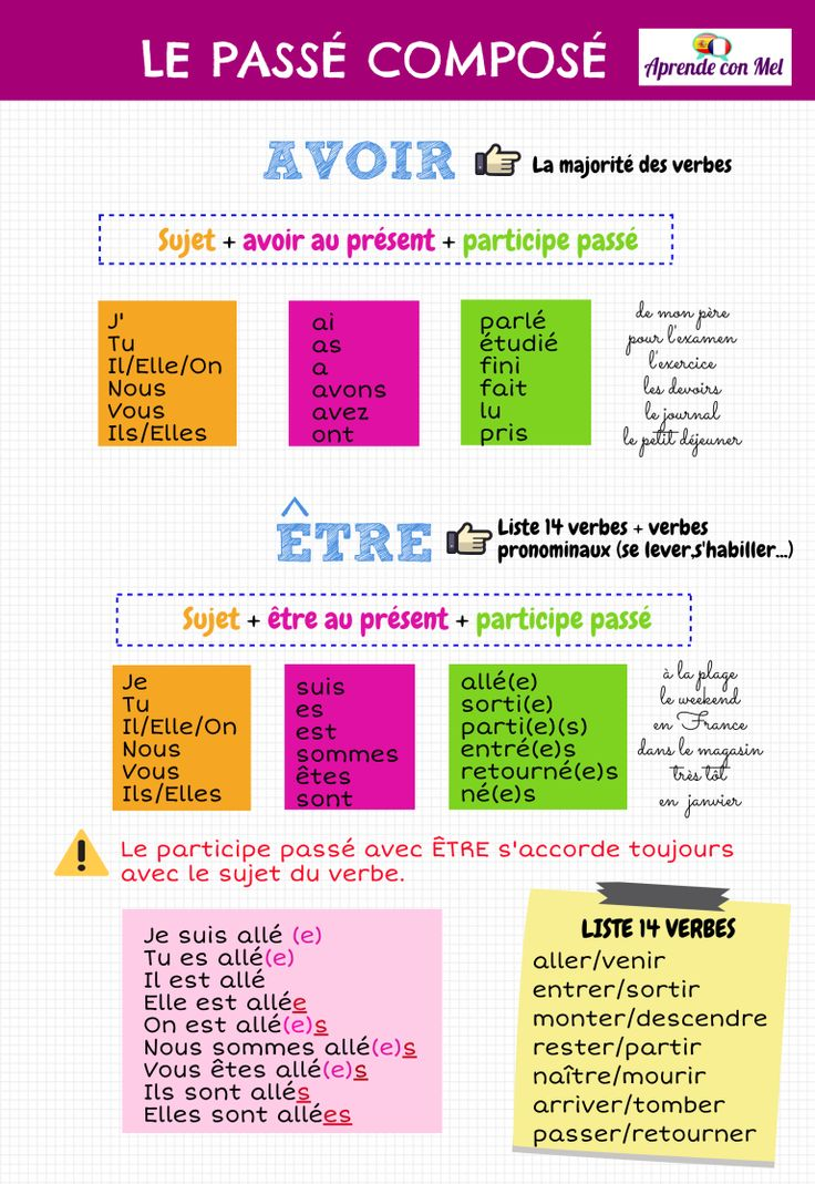 educational infographic   infographies sur la formation du