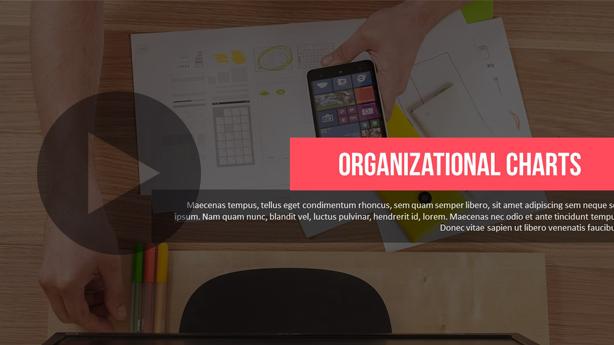 Organizational Chart Power Point Presentation - 1